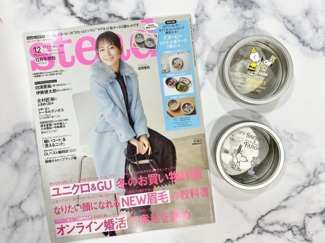 ステディ12月号増刊号