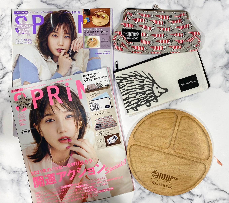 SPRiNG2月号&増刊号の画像
