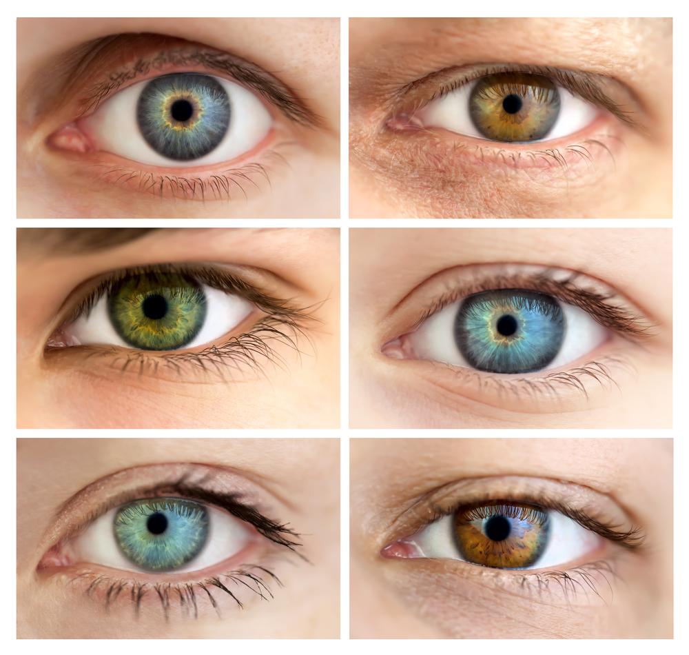 切れ長の目とたれ目・細目との違い