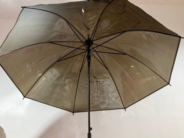 KANGOLの傘を開いて下から見上げたところ